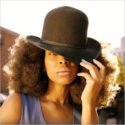 badu The Top 35 Albums to Buy in 2010