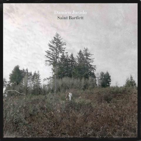 saint bartlett damien jurado 480 CoS Year End Report: The Top 100 Albums of 2010