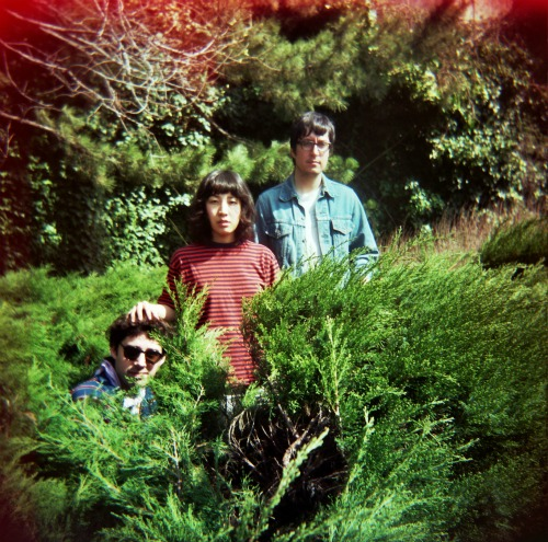 the beets The Beets sign to Hardly Art, announce new LP: Let the Poison Out