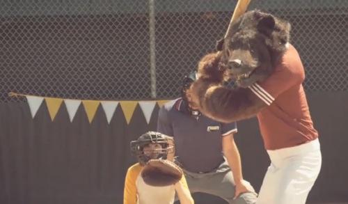 wild flag bear VIdeo: Wild Flag   Electric Band
