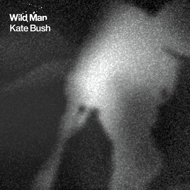 kate bush wild man Top 50 Songs of 2011