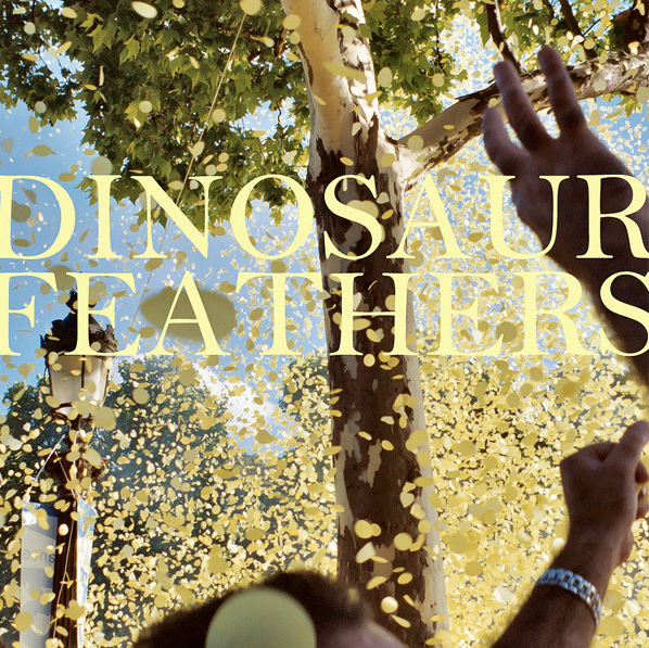 dinosaurfeathers Dinosaur Feathers announce sophomore album: Whistle Tips