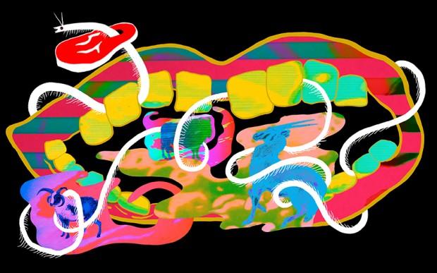 Album Review: Animal Collective   Centipede Hz