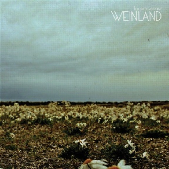 weinland albumcover Top mp3s of the Week (9/13)