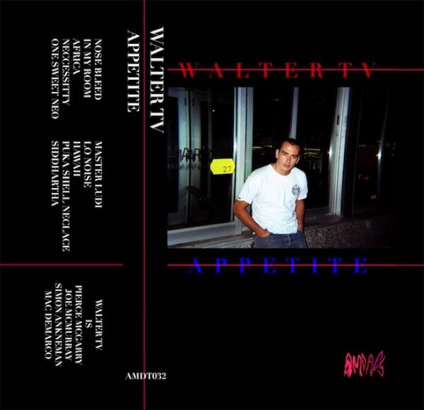 walter tv appetite e1353942912703 Mac DeMarco led band Walter TV releases APPETITE cassette tape