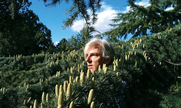 Robyn Hitchcock announces new album, Love From London