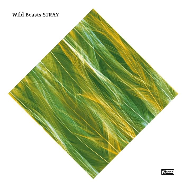 Wild Beasts Stray