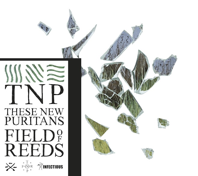 These New Puritans Field of Reeds