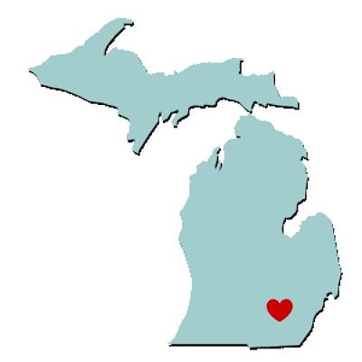 michiganlove Five Reasons Sufjan Stevens Michigan Gave Us Hope