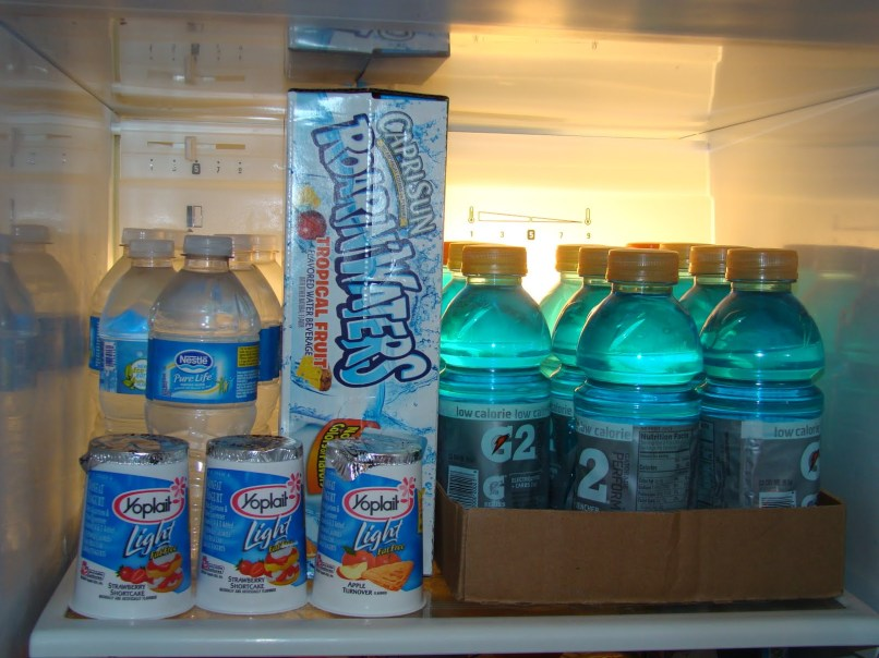 fridge stocked Prepare Yourself to Repair Yourself