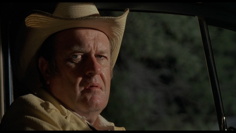 walsh DNA: The Coen Brothers Blood Simple