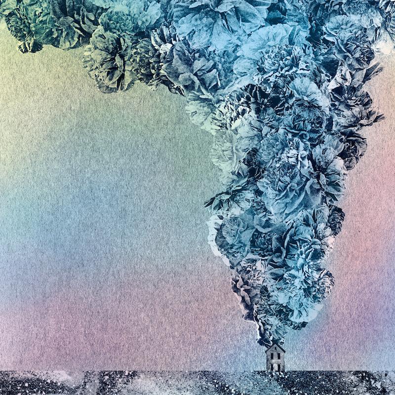 Daughn Gibson - Carnation new album