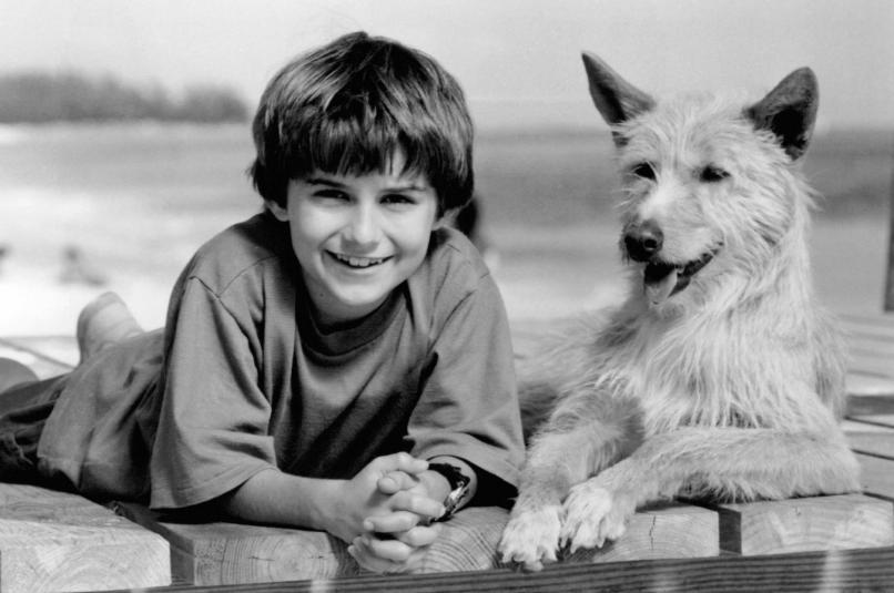 zeus roxanne The 101 Greatest Dogs in Film History