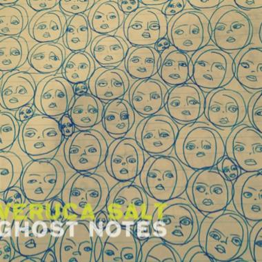 Veruca Salt new album reunion Ghost Notes
