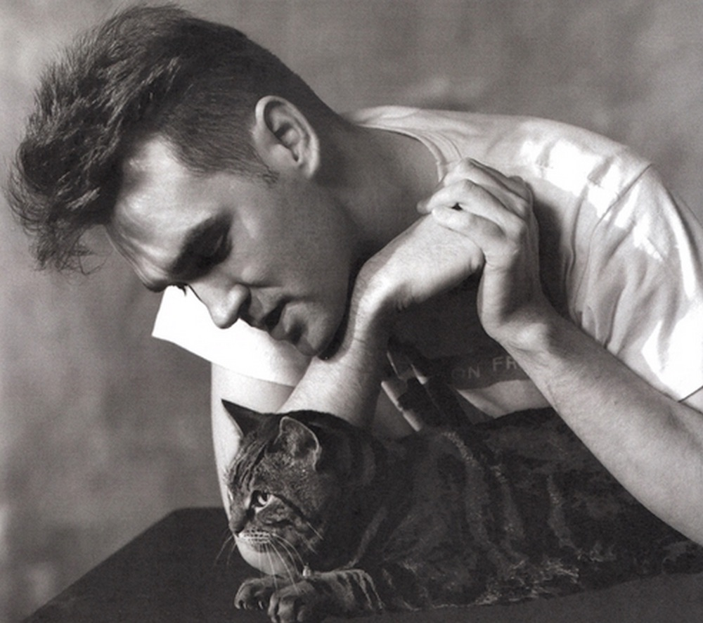 Morrissey-Cats-tumblr-1