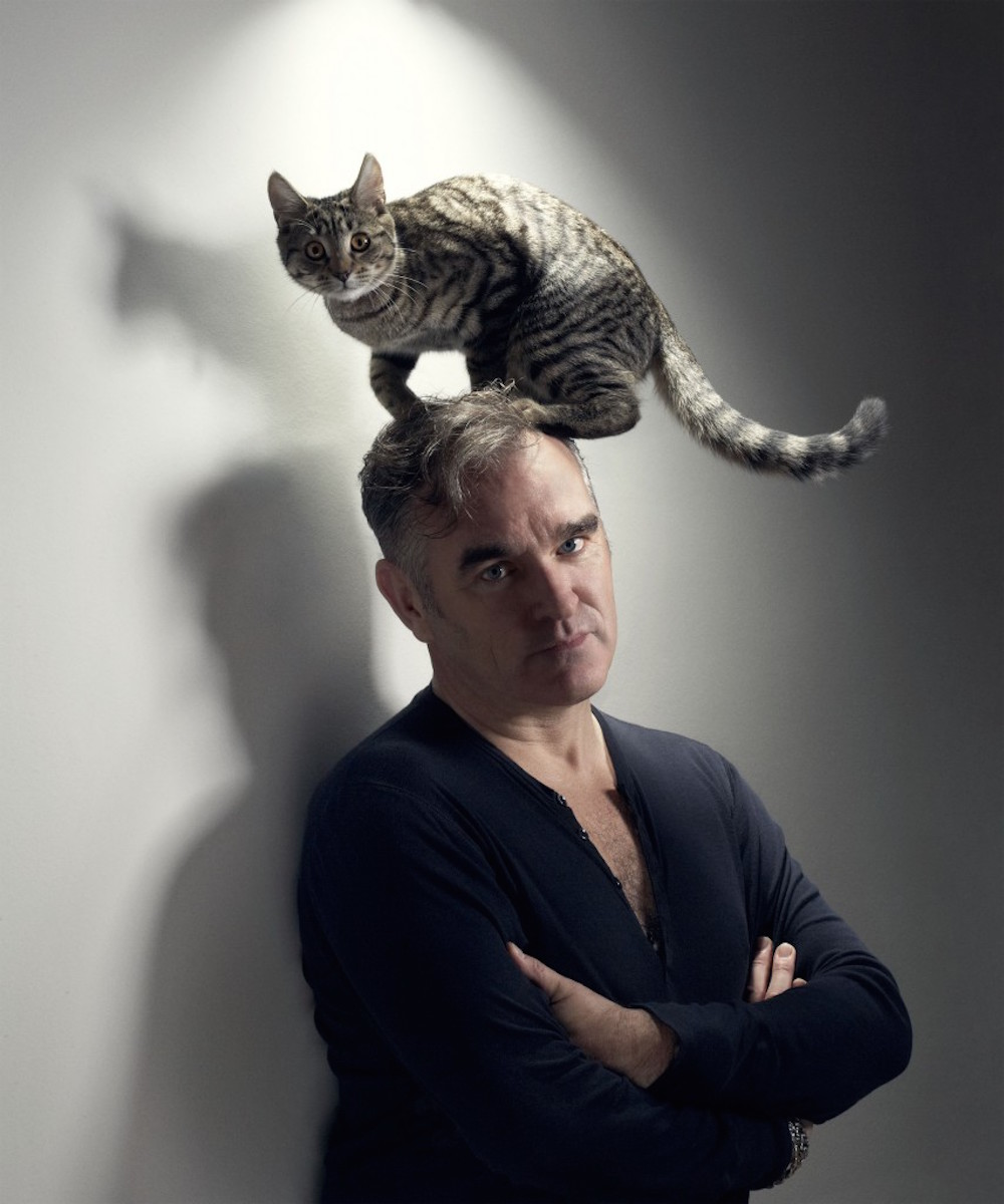 Morrissey-Cats-Tumblr-4