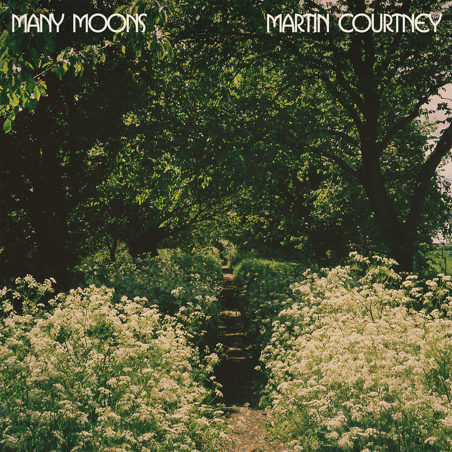 martin courtney many moons album solo