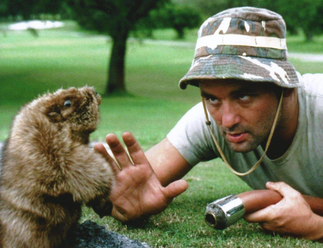 caddyshack murray e1445026146984 Bill Murrays Top 10 Performances