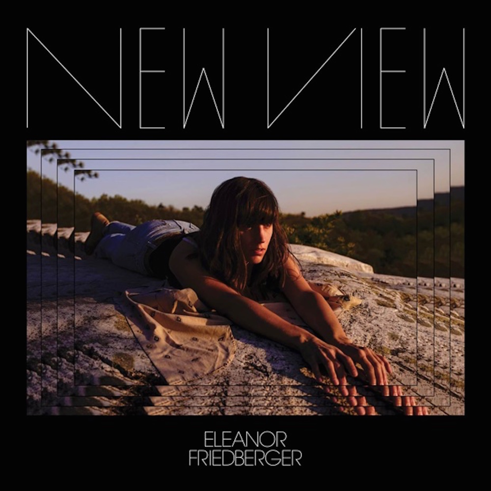 eleanor friedberger new view album