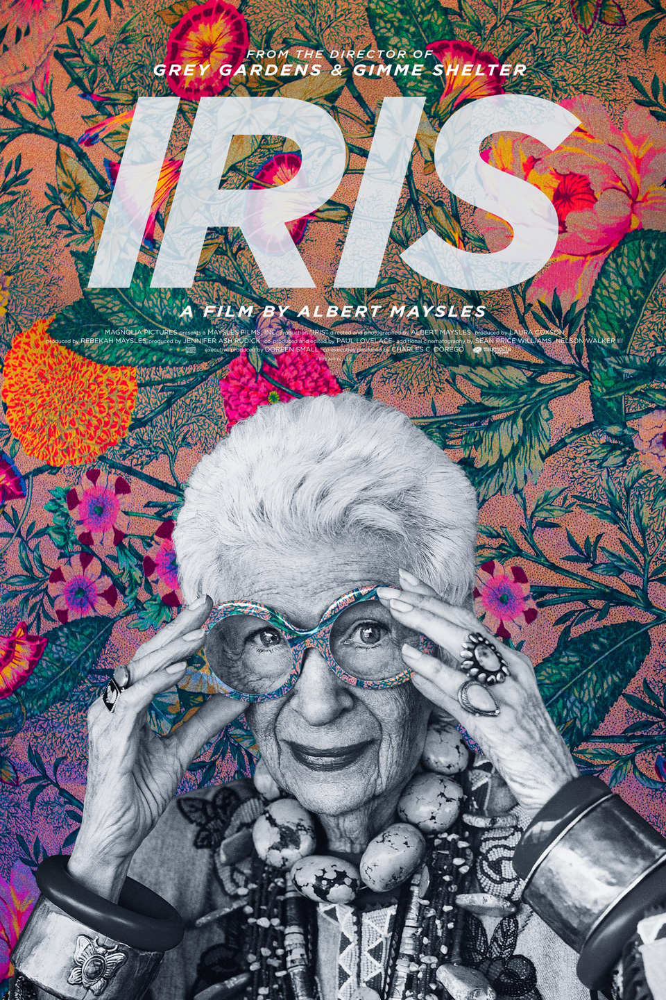 iris poster Top 25 Films of 2015