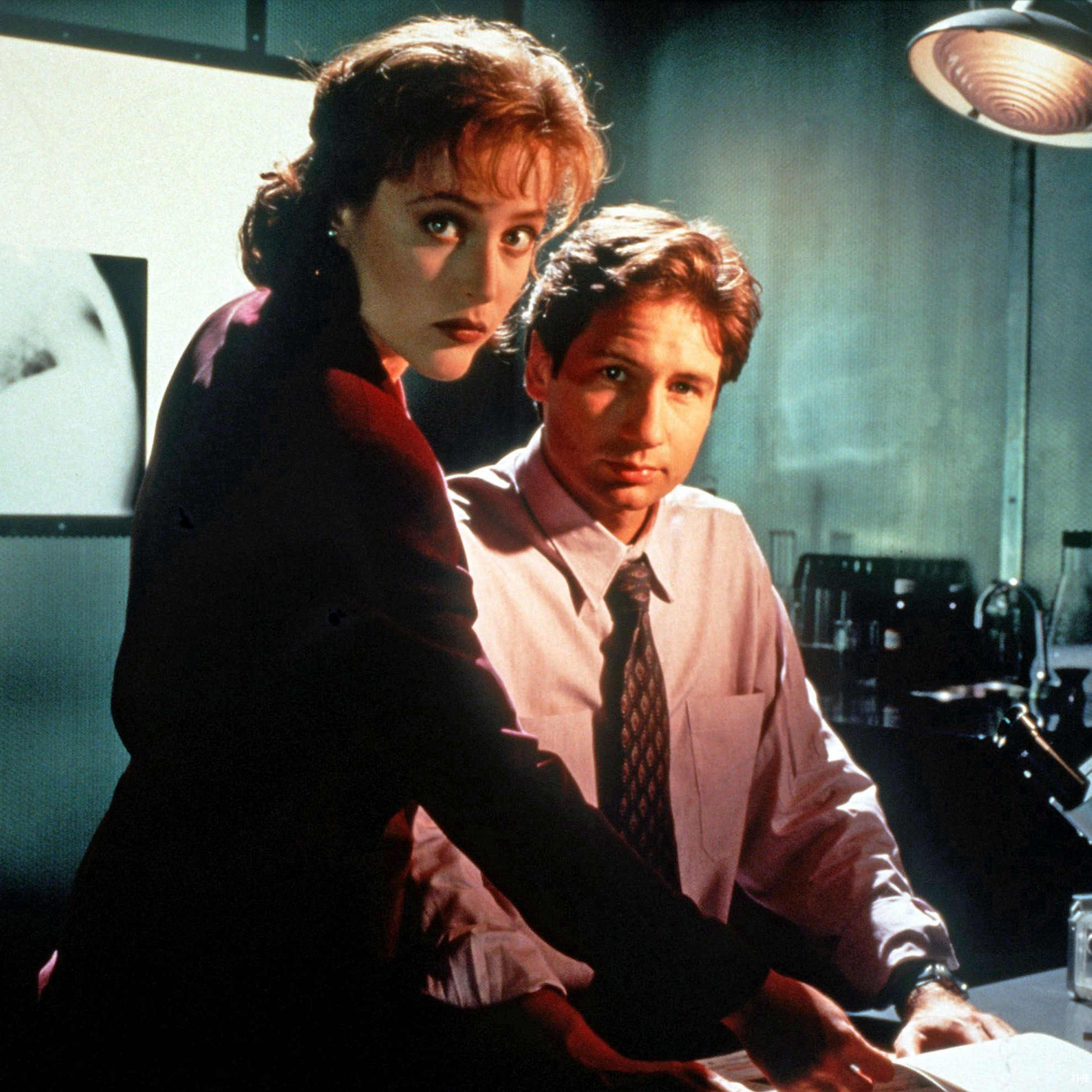 the x files feat e1452717367110 10 Years with David Duchovny: On Loving Garry Shandling, Missing Bonnie Hunt, and Fighting for the Future