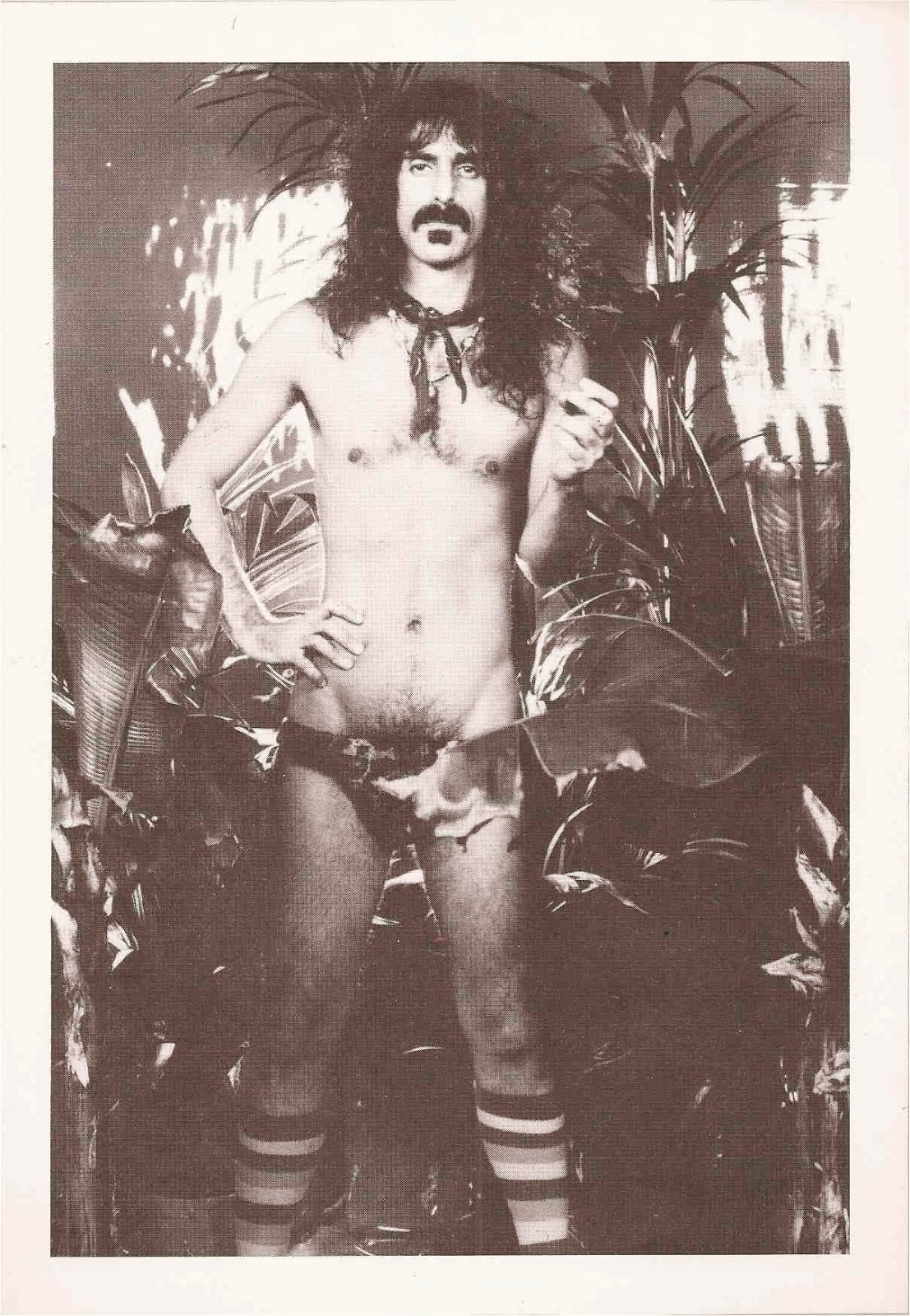 zappa Rock Stars in their Underpants may be the most important book ever published