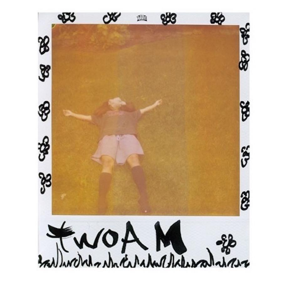 sza two am cover SZA reworks Drake and PartyNextDoor on new song twoAM    listen