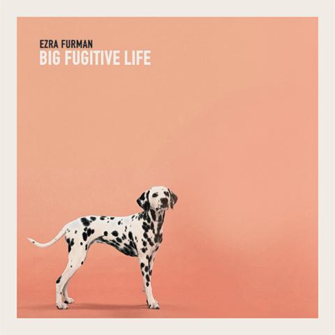 unnamed2 Ezra Furman announces Big Fugitive Life EP, shares Teddy Im Ready    listen