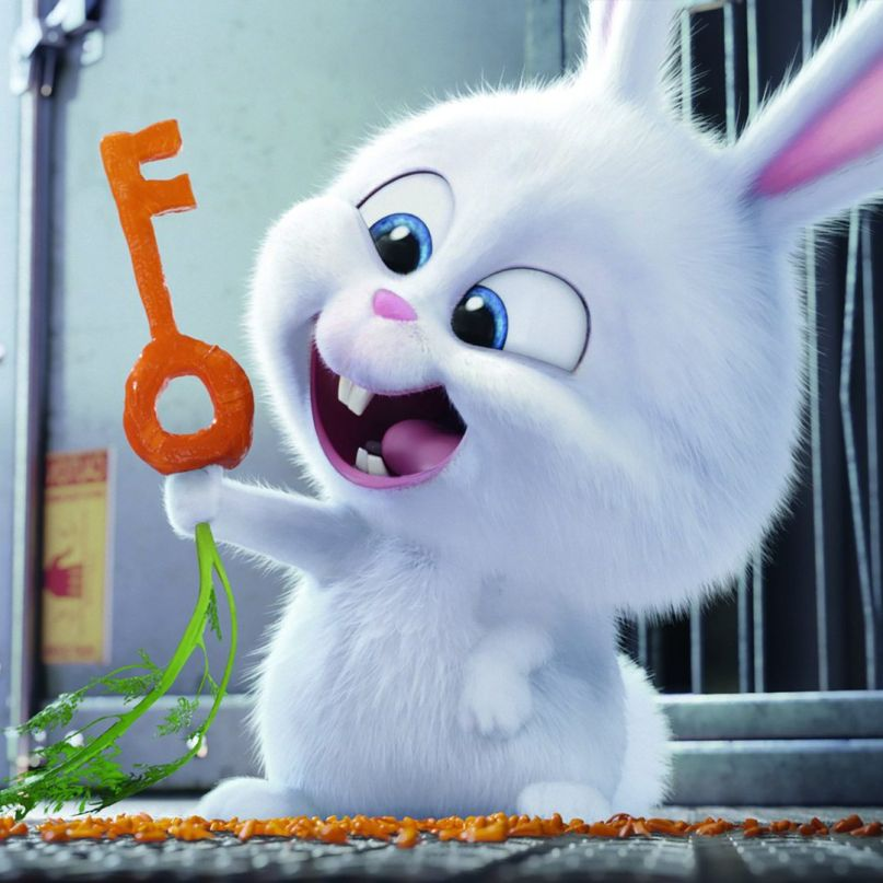 Film Review The Secret Life Of Pets Consequence Of Sound