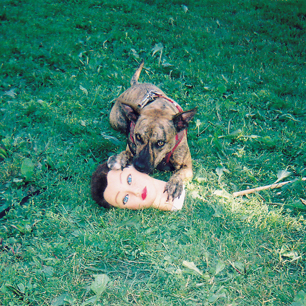 joyce manor cody Joyce Manor announce Cody LP, share lead single Fake I.D.    listen
