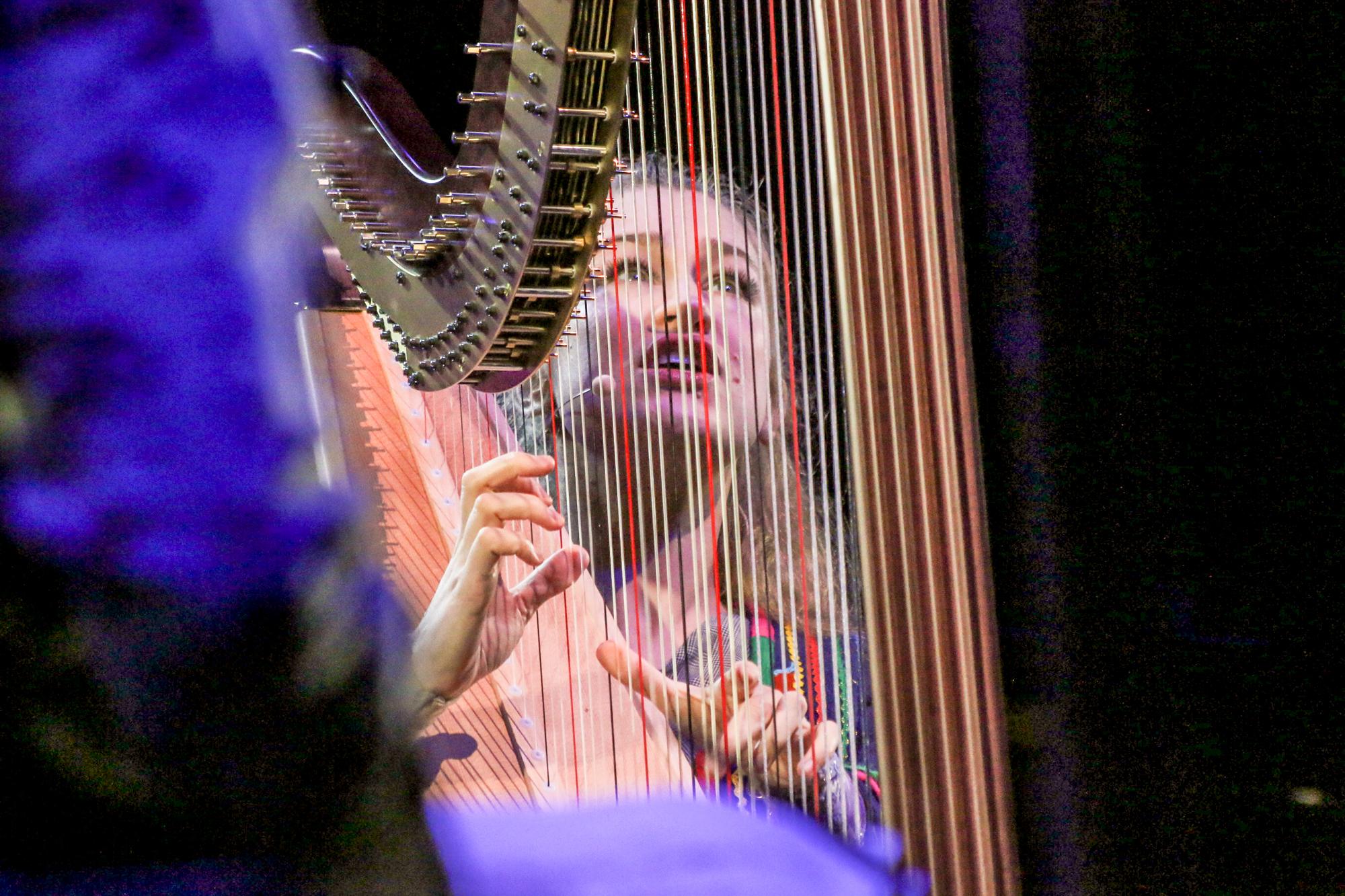 Joanna Newsom, photo by Nina Corcoran