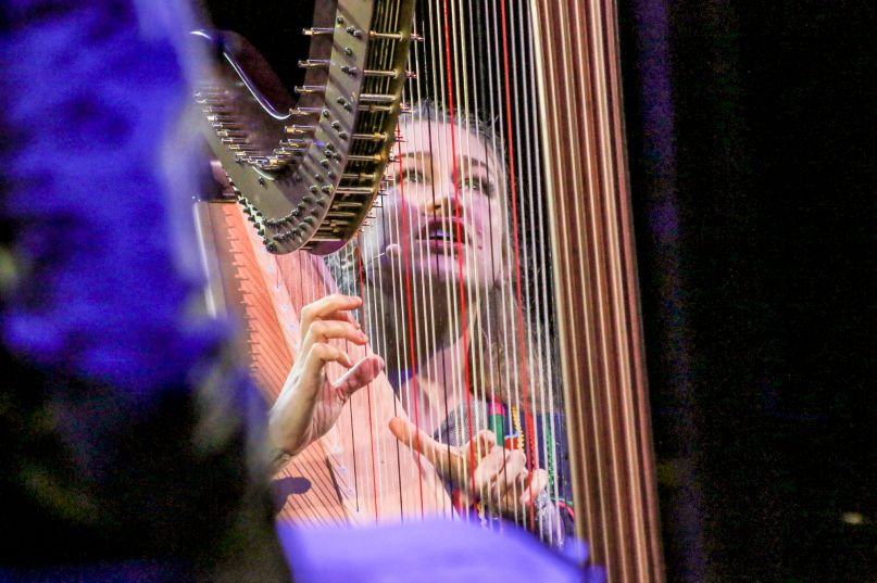 Joanna Newsom, photo by Nina Corcoran