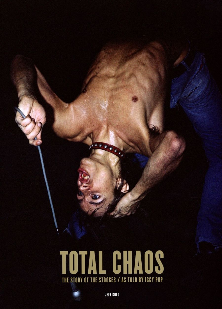 total chaos iggy Consequence of Sounds 2016 Holiday Gift Guide