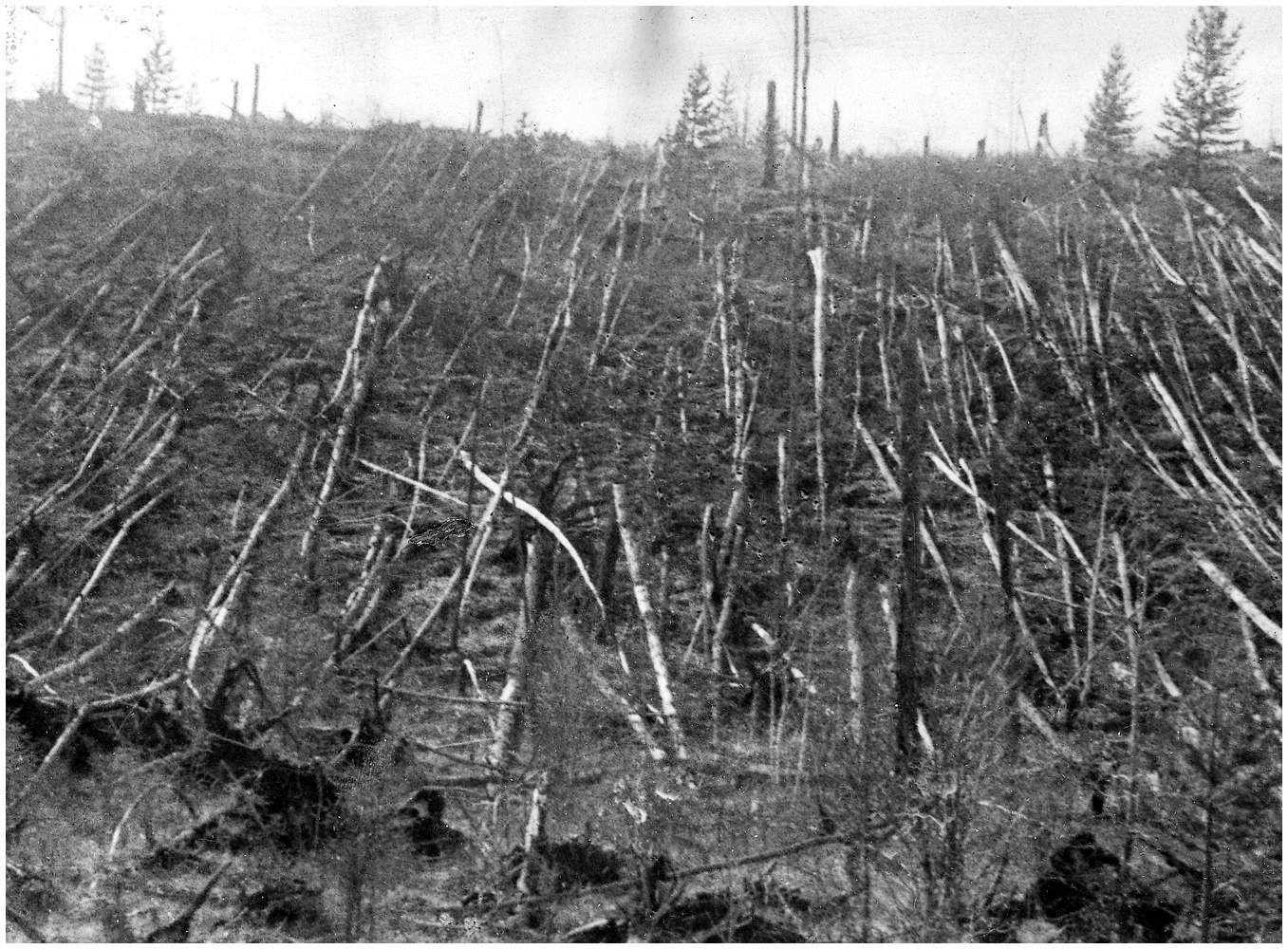 tunguska1 1908 in Pop Culture, AKA The Last Time the Chicago Cubs Won a World Series Title