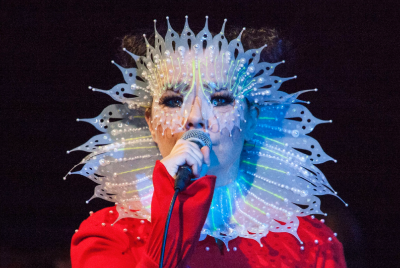 bjork 10 Artists Who Need to Curate a Music Festival
