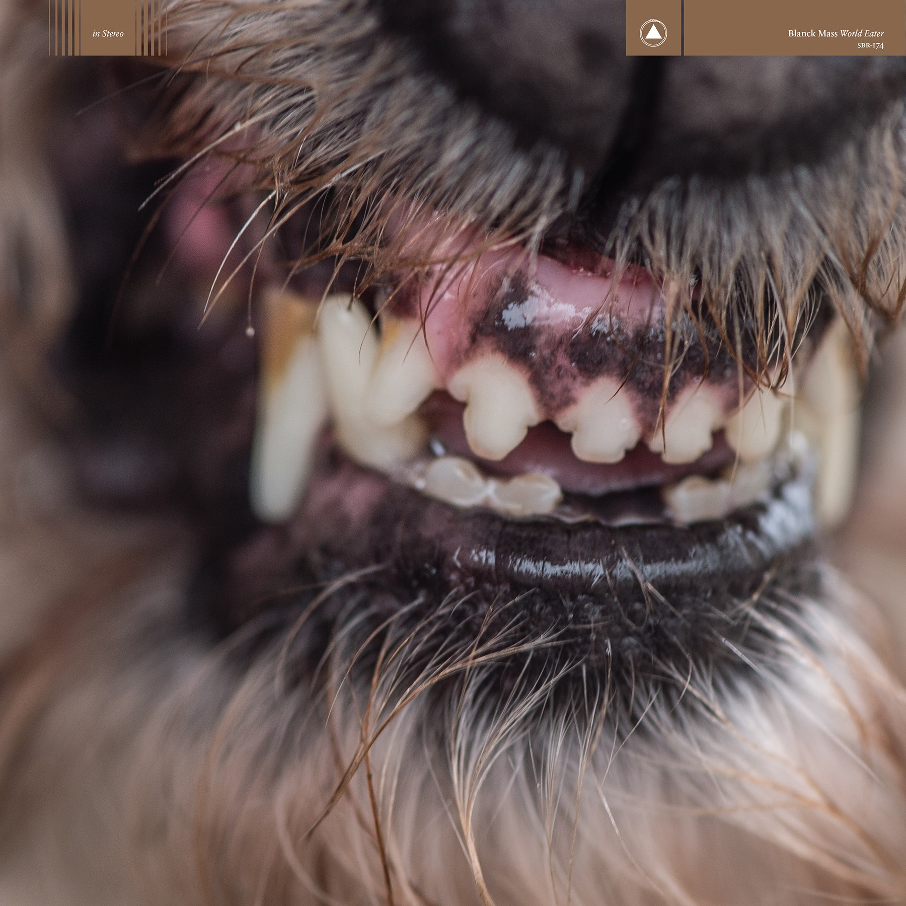 blanck mass world eater album 2017 Blanck Mass announces new album, World Eater, shares Please    listen