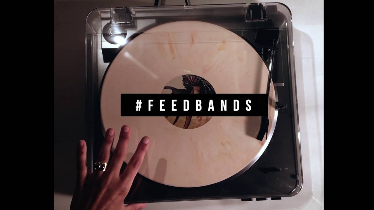 feedbands How Feedbands Is Turning the World On to New Independent Artists
