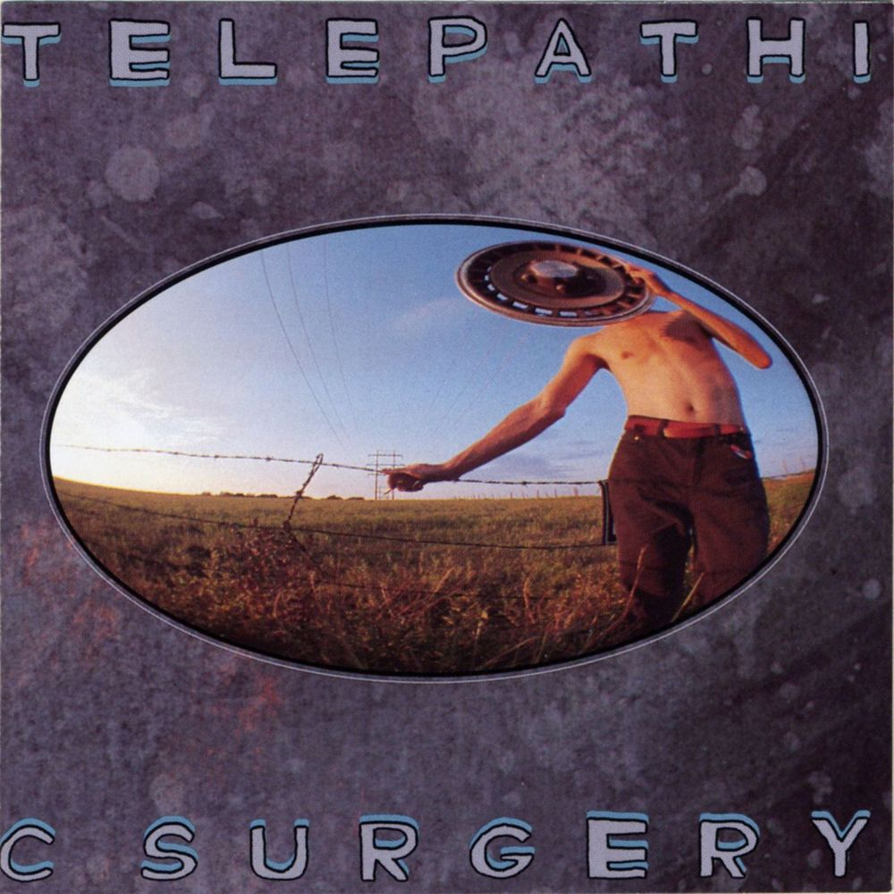 telepathic surgery Dissected: Every Flaming Lips Album with Guest Commentary from Wayne Coyne