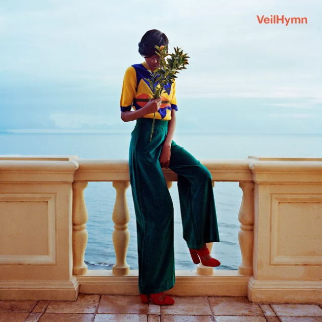 veilhymn Blood Oranges Dev Hynes launches new project VeilHymn with first single Hymn    listen