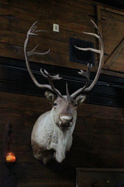 Twin Peaks Lodge // Photo by Heather Kaplan