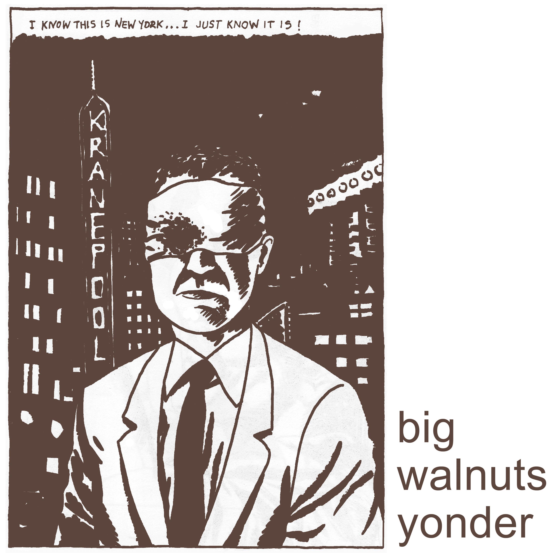 big walnuts yonder 3000x3000 300 dpi Big Walnuts Yonder (Minutemen, Wilco, Deerhoof, Tera Melos) share self titled debut album: Stream