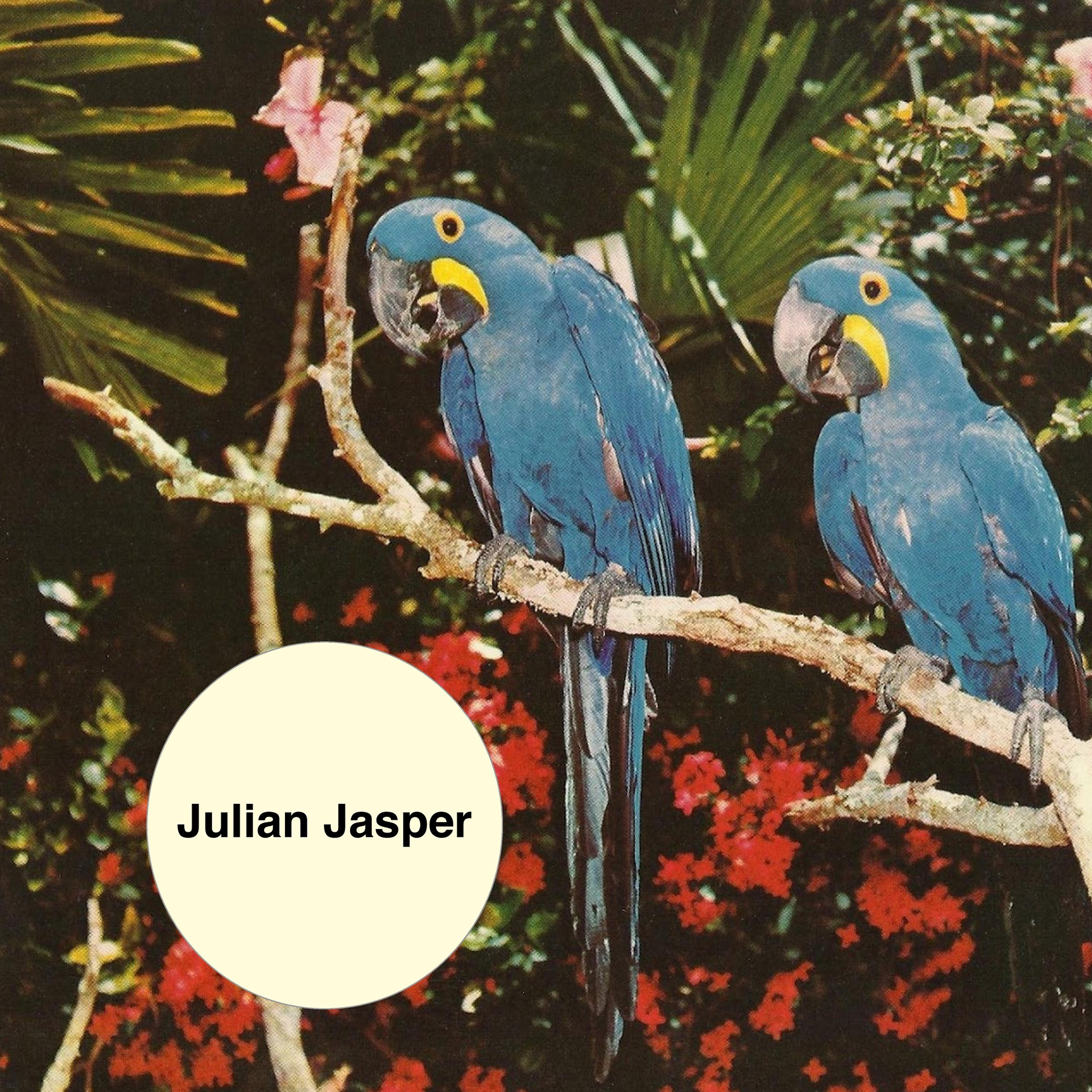 julian jasper ep art high res Psych pop maestro Julian Jasper shares sunny, sad 2AM, Chinatown/I Dont Mind EP: Stream