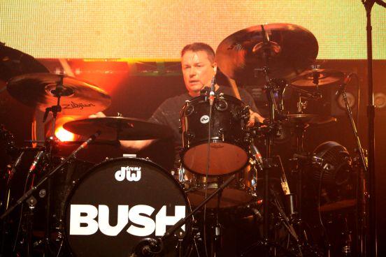 Bush // Photo by Heather Kaplan