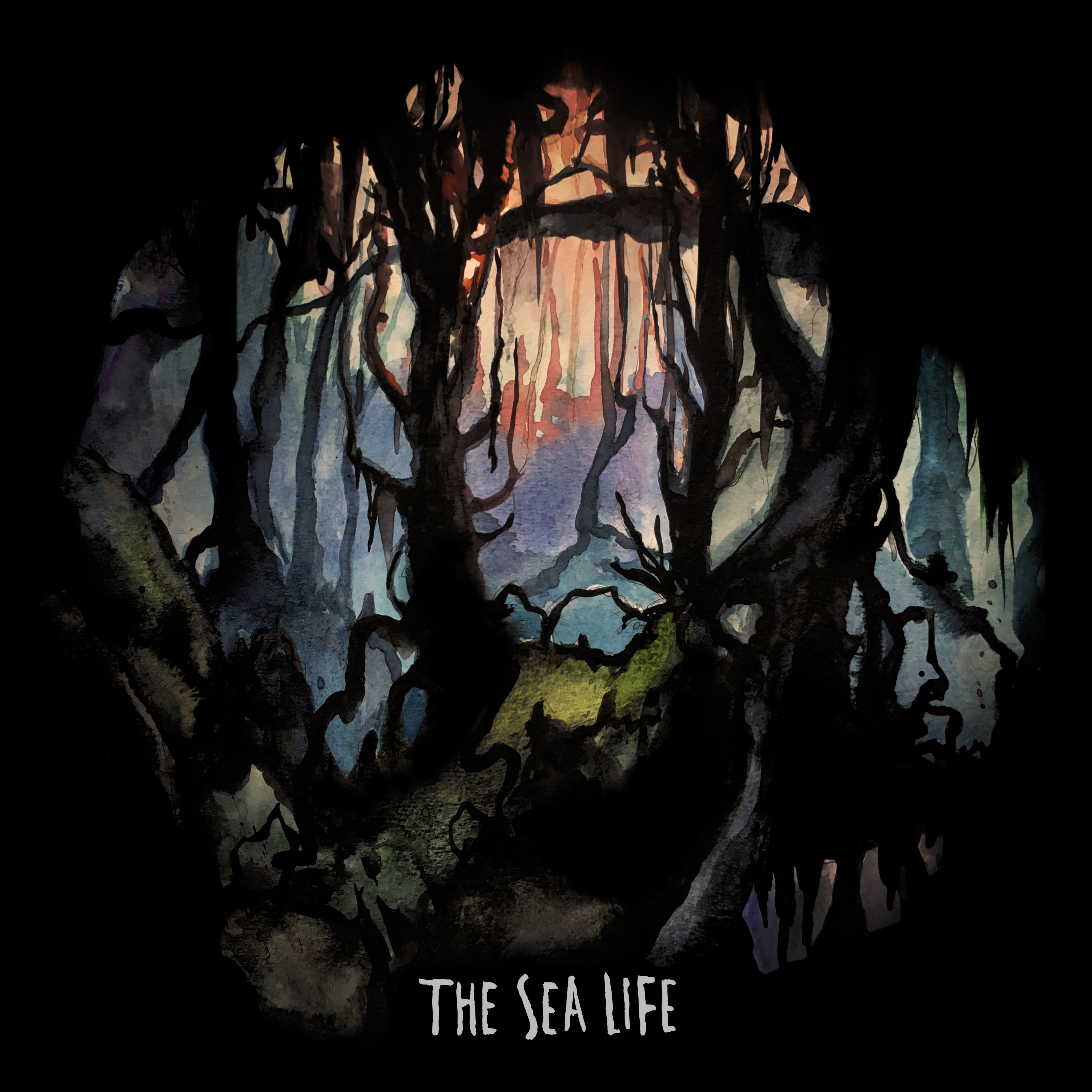 tsl albumcover web DC noise pop outfit The Sea Life share self titled new album: Stream