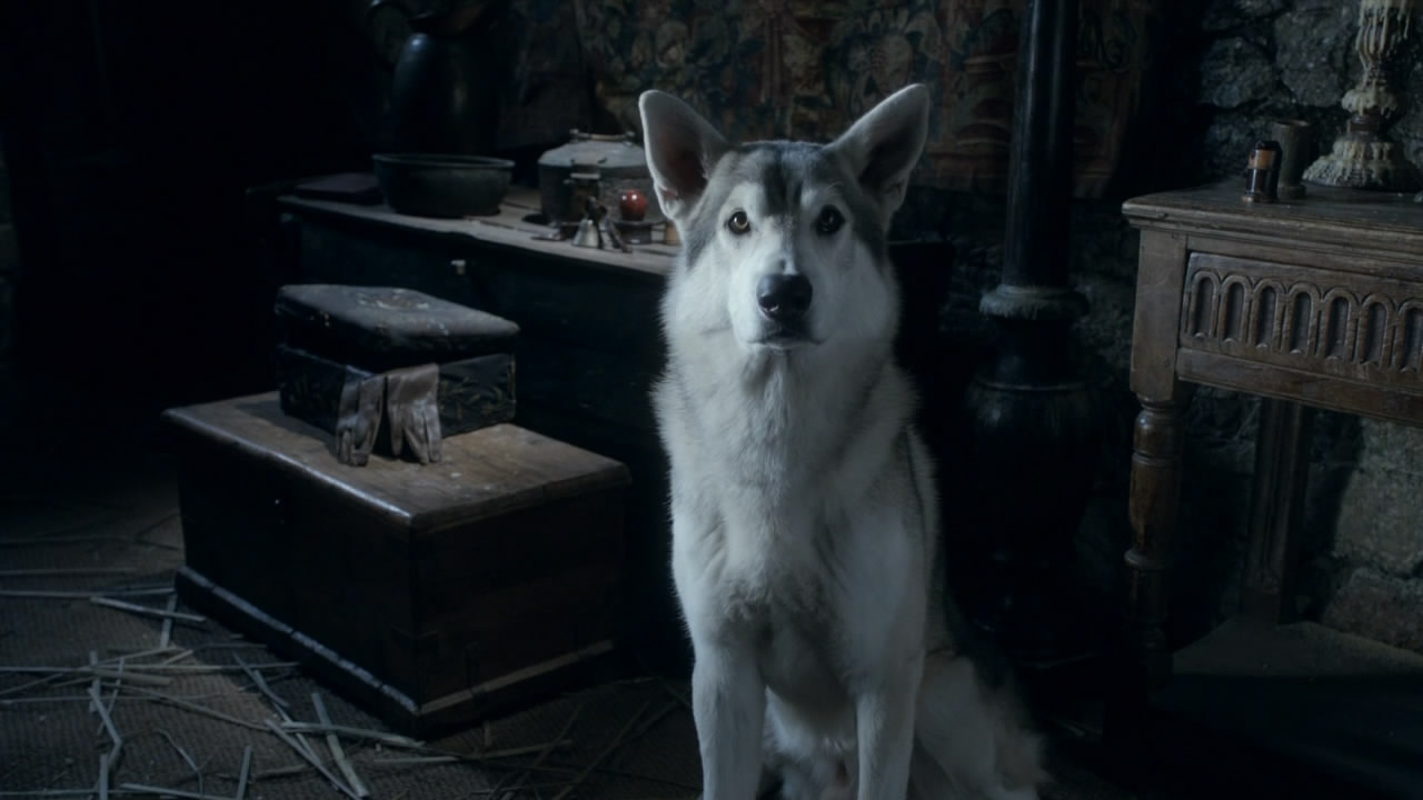 nymeria Five Game of Thrones Theories That Worked And Five That Flopped