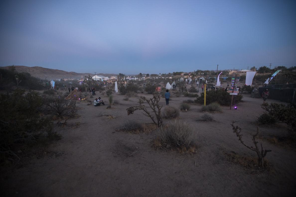 jf cp desertdaze 2017 0351 Desert Daze 2017