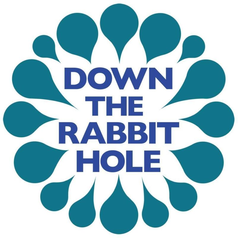 down the rabbit
