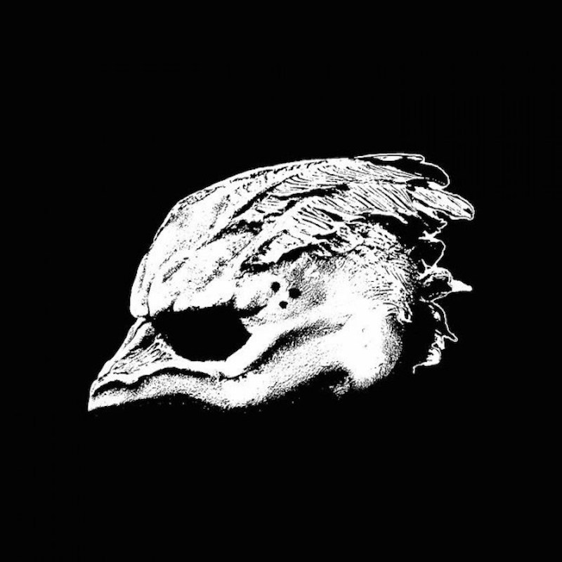 legend seagullmen debut album Tool and Mastodon supergroup Legend of the Seagullmen reveal self titled debut album: Stream