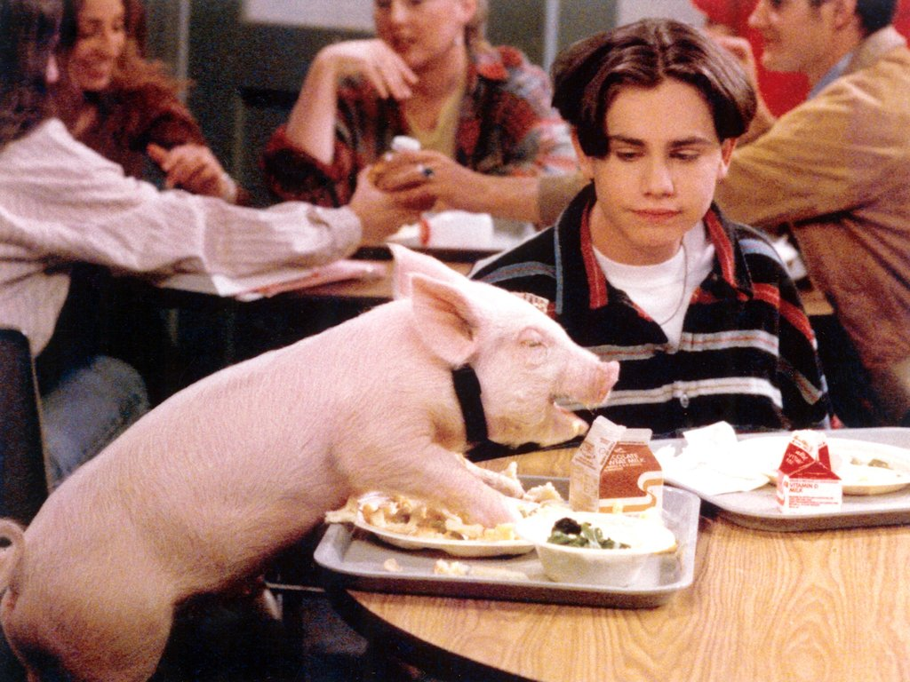 even shawn pets were adorable The 25 Best Teens in TV History