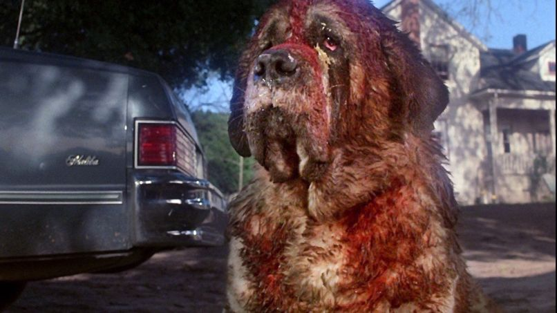 cujo Greetings from Castle Rock: A Stephen King Film Festival